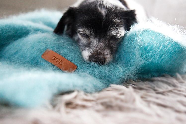 Manta para perros de HANNIKO