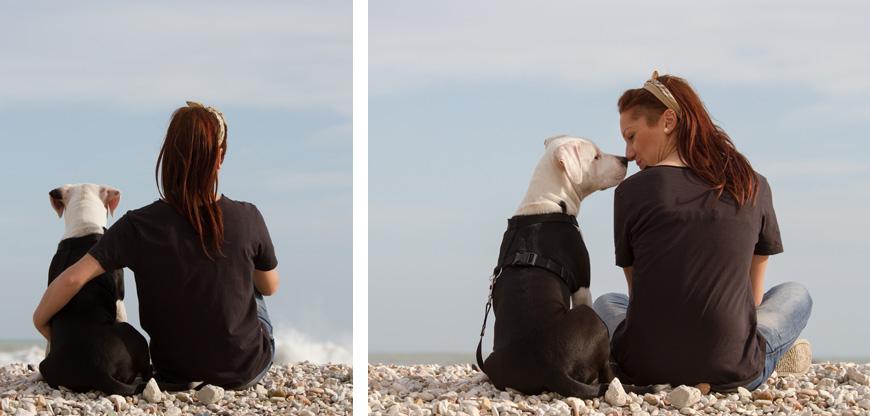 Reflexiona antes de empezar con la educación de tu perro