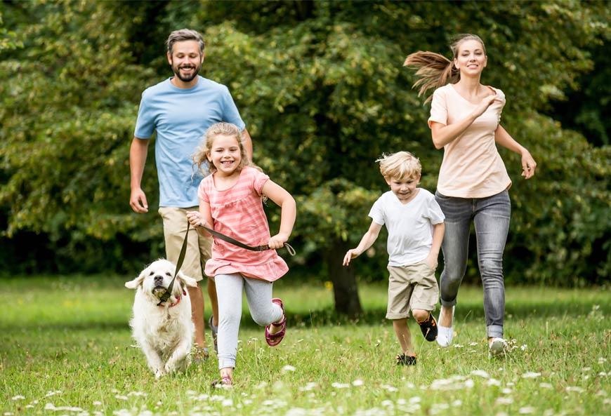 Trabajar en familia para educar a tu perro