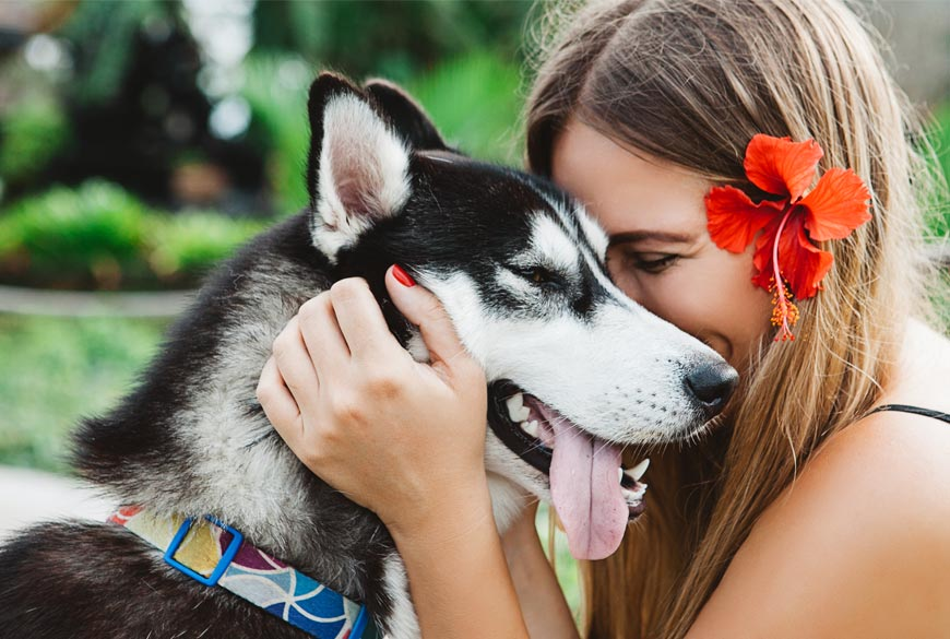 Ama a tu perro