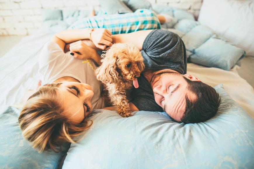Dormir con tu perro y con tu pareja