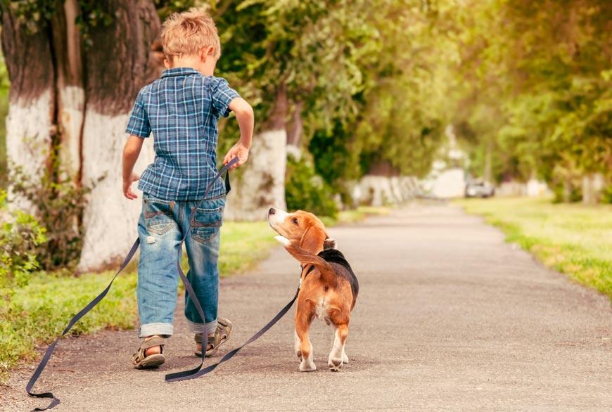 Los perros y los niños se llevan muy bien