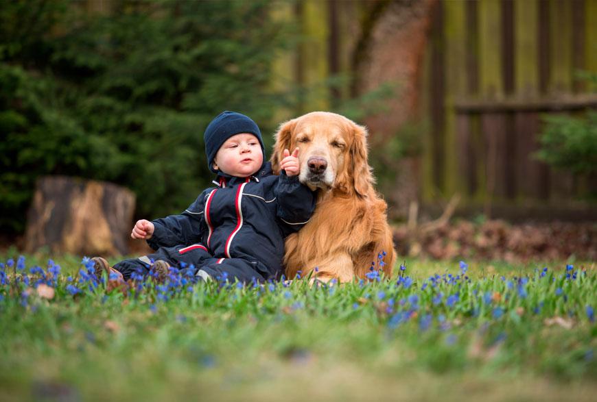Perro y bebé entendiéndose