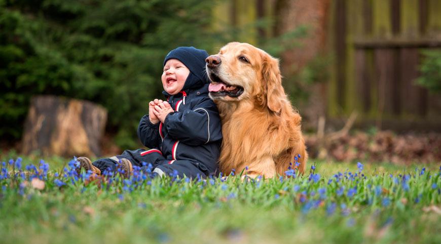 Perro y bebé dándose amor