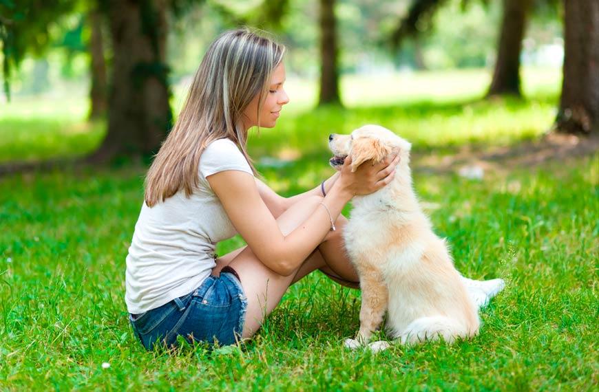 Los perros nos hacen más responsables