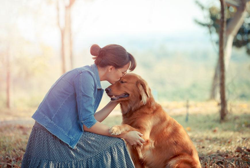 La complicidad entre perro y humano
