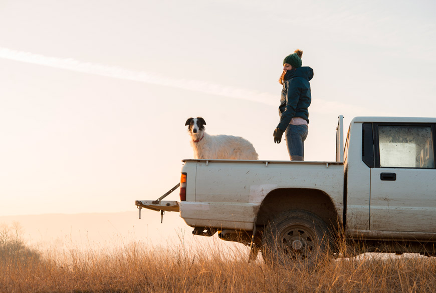 Los perros nos hacen más fuertes y saludables