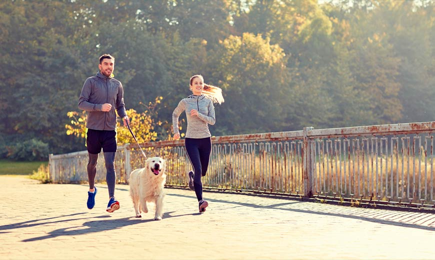 Los perros nos ayudan a hacer ejercicio