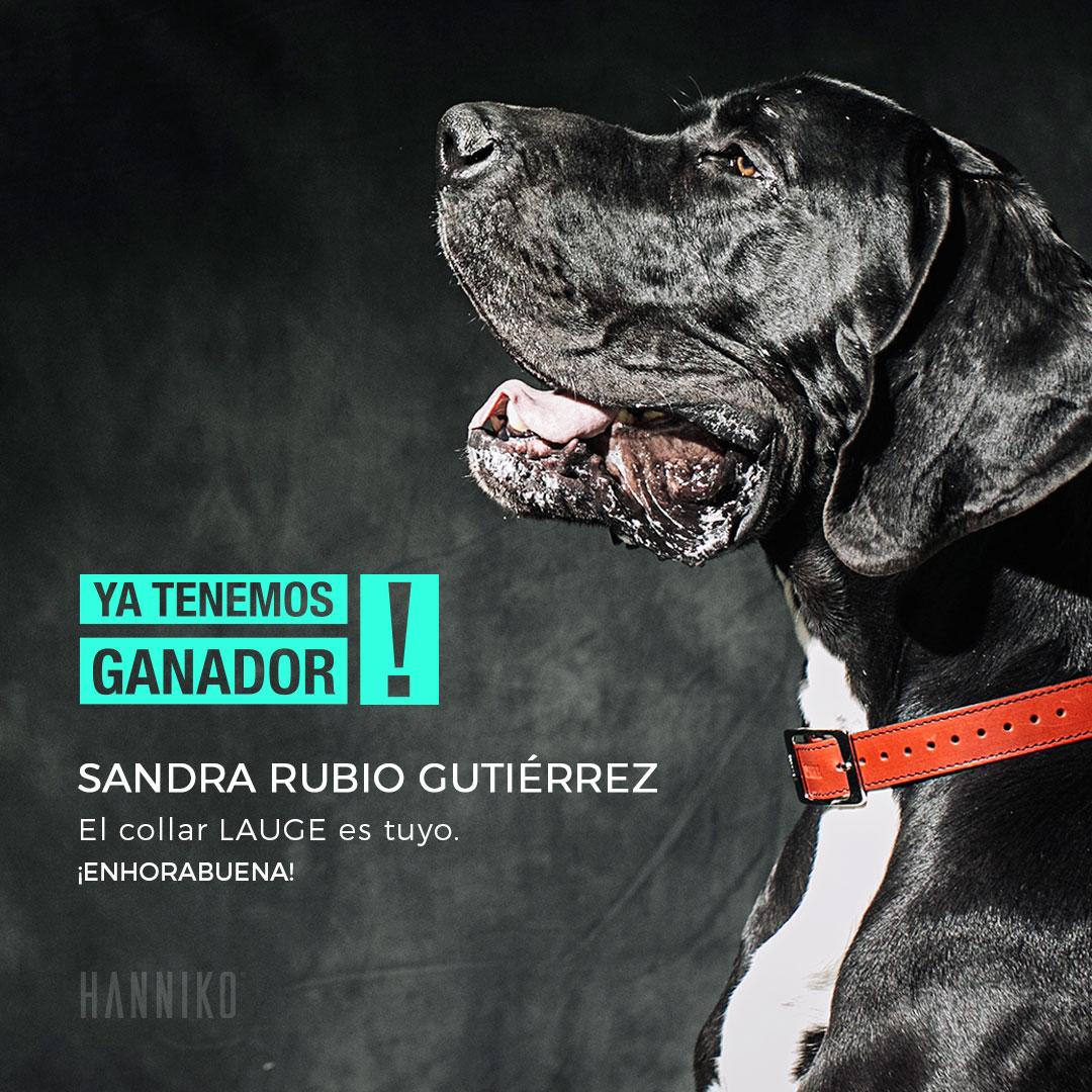 ganador del sorteo del collar para perros lauge de hanniko