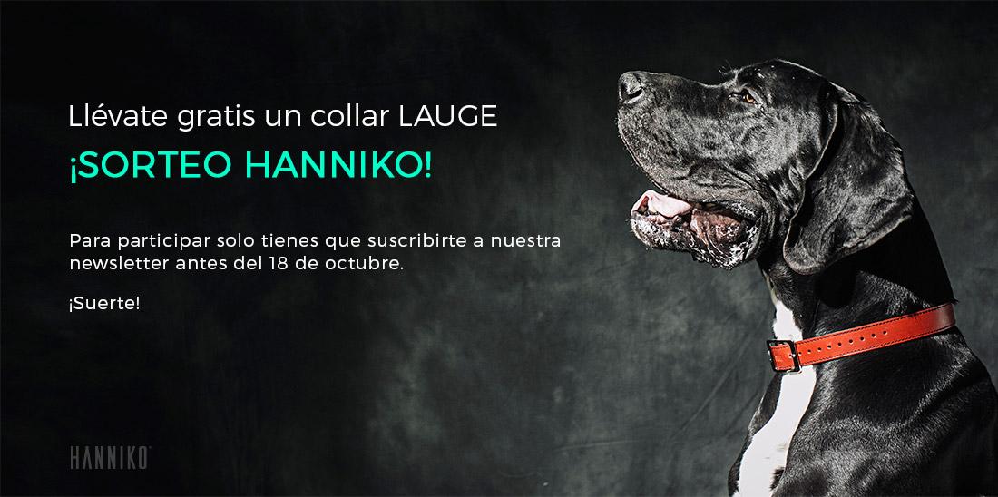 sorteo de collar lauge hanniko para perros producción hecha a mano y fabricado en europa